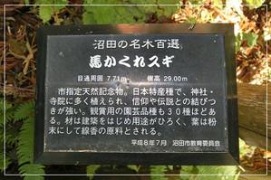 Dc110178